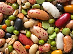 A variety of beans and other legumes.